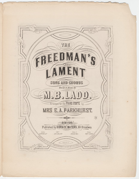Thumbnail for The freedman's lament: ...
