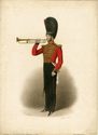 Thumbnail for Coldstream Guards. Bandsman, ...