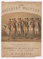 Thumbnail for The Anglesey waltzes