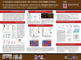 Thumbnail for Characterization of gene …