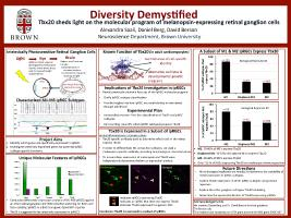 Thumbnail for Diversity demystified: Tbx20 …