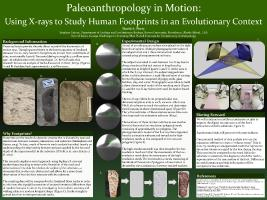 Thumbnail for Paleoanthropology in motion: …